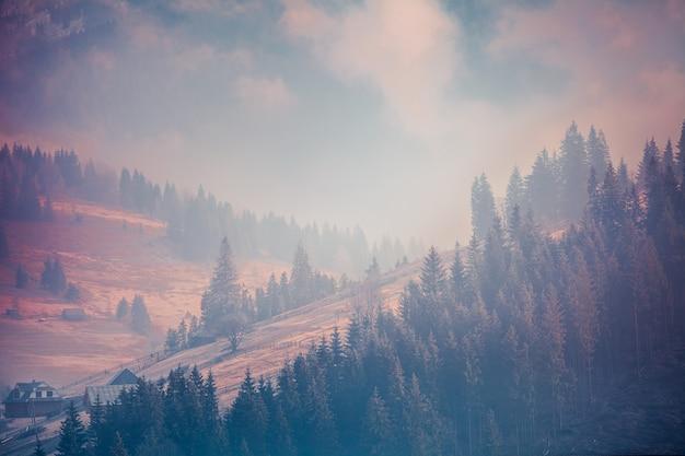 ピンクバイオレットパープルブルーのおとぎ話の風景は、カルパティア山脈のブコベルウクライナをシェーディングします