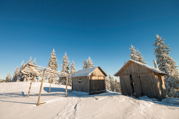 Fairy tale winter sunny landscape. two weathered wooden shepherd huts on mountain snowy clearing among pine trees on brightl blue sky copyspace .