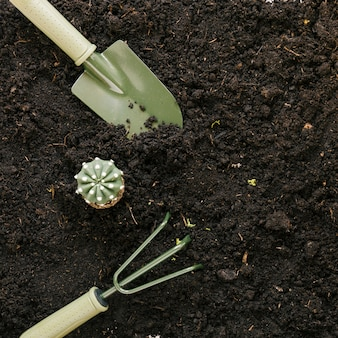 Fake cactus plant and gardening tools above black soil
