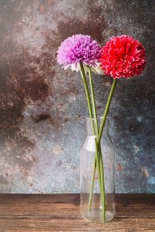 Fake chrysanthemum flowers in the glass vase against grunge background