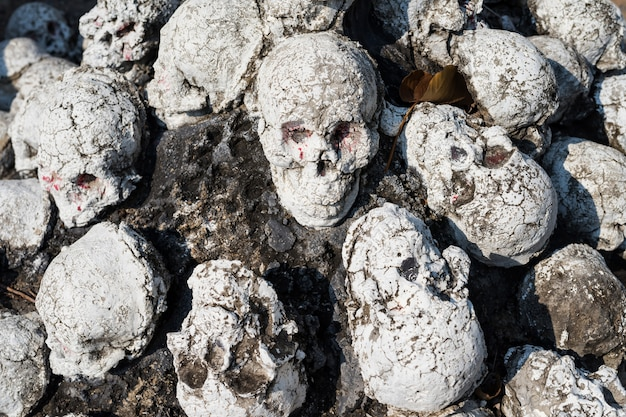 Fake human skulls, halloween concept
