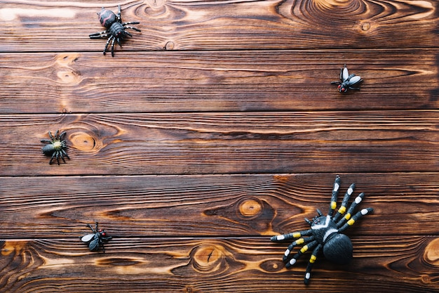 Fake insects on table