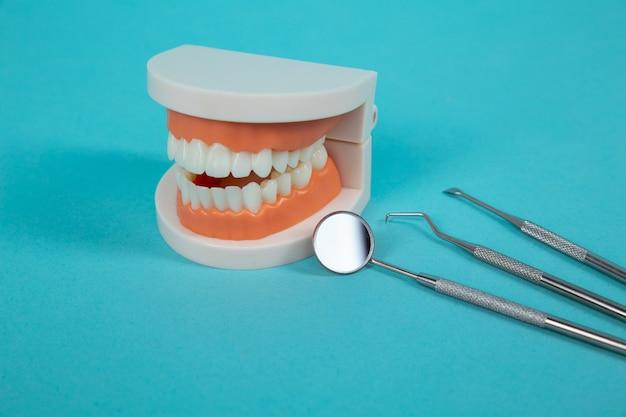 Поддельная челюсть с медицинскими инструментами, изолированными на синем фоне.