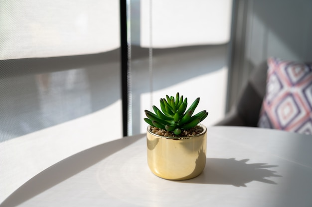 Fake plant in pot on white table with sun light near windows
