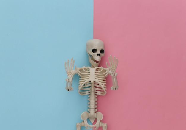 핑크 블루 파스텔에 가짜 해골. 할로윈 장식, 무서운 테마