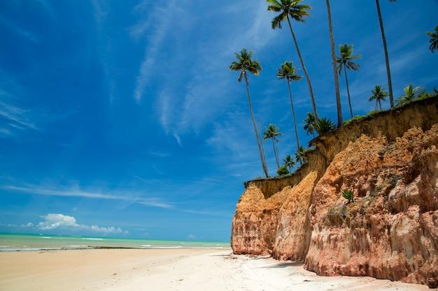 Фалезиас на пляже барра-ду-кахи, баия, бразилия. февраль, 2017.
