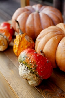 Осенний осенний декор с тыквами