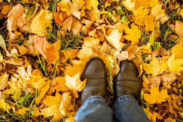 가을, 가을, 나뭇잎, 다리 및 신발. 단풍에 부츠에 다리의 개념적 이미지. 자연에서 걷는 발 신발