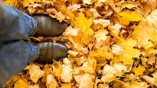 秋、秋、葉、足、靴。紅葉のブーツの足の概念的なイメージ。自然の中を歩く足の靴
