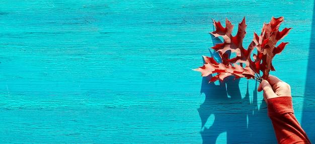 コピースペースと秋の背景。ひびの入ったテクスチャターコイズブルーの木材に女性の手で赤いオークの葉でパノラマフラットが横たわっていた。