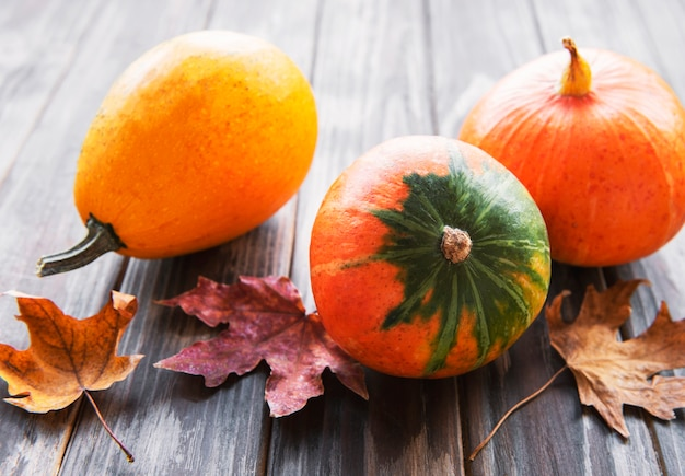 Fall background with multi color pumpkins on rustic background