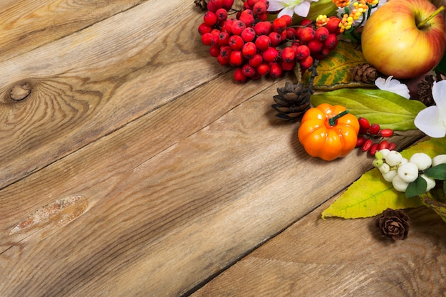 Fall background with pumpkin, apple, autumn leaves, rowan berries, copy space