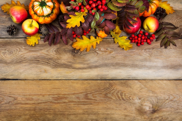 Fall background with red rowan and yellow oak leaves,