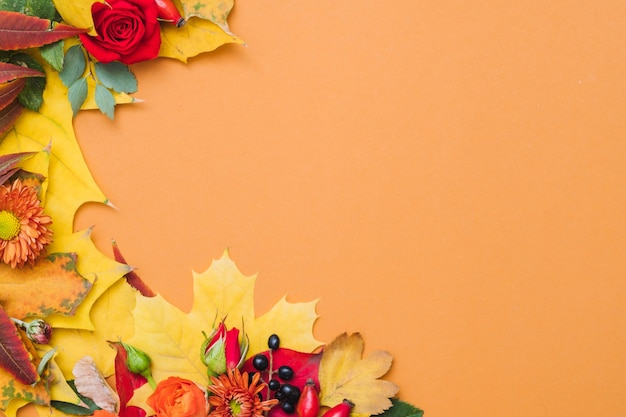 Fall berries, colorful leaves and red roses on orange