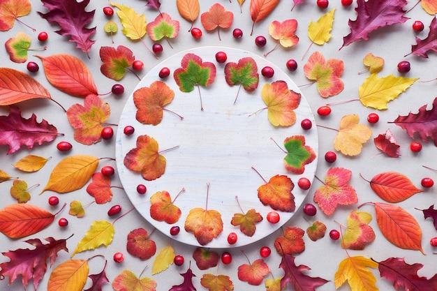Падение круговой фон с различными осенними листьями, красным, оранжевым и желтым. квартира лежала на белом каменном фоне.