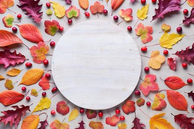 Падение круговой фон с различными осенними листьями, красным, оранжевым и желтым. вид сверху, расположение на белом каменном фоне, копия пространства.