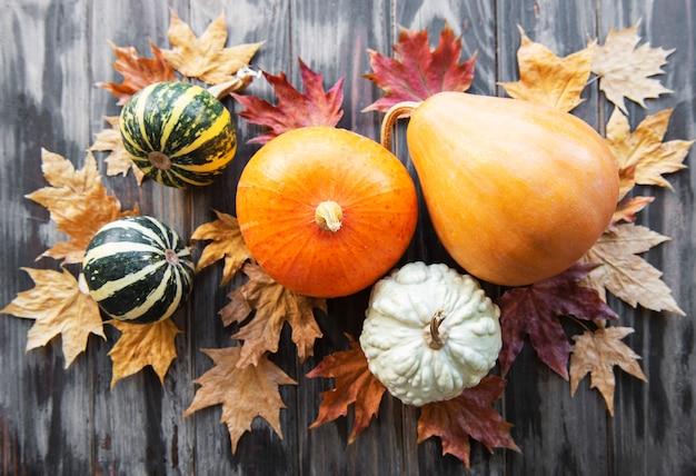 소박한 배경에 다양한 색상의 호박이 있는 가을 구성
