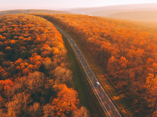 Fall forest landscape with rural road view from above