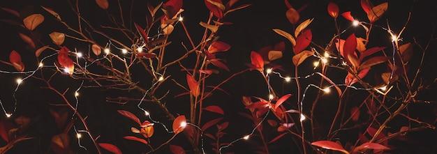 ガーランドライトと紅葉、夜の裏庭の装飾と秋の休日のパーティーの背景