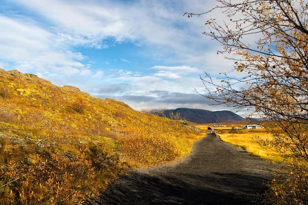 아이슬란드의 가을 아이슬란드의 잔디밭이 있는 풍경 보기 가을 풍경 흐린 날 기후