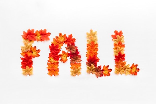 Fall inscription design concept