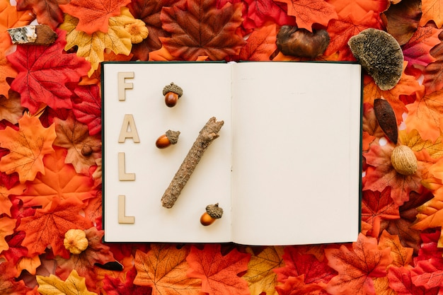 Fall inscription in open book