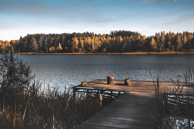 Fall landscape with wood jetty lake yellow dark woods on horizon and sky in autumn