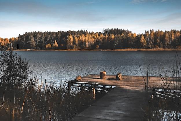 수평선과 가을 하늘에 나무 부두 호수 노란색 어두운 숲과 가을 풍경