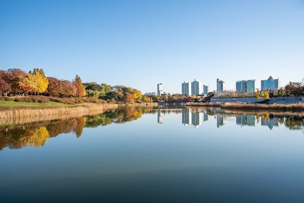 Fall leaves. fall scenery. lake. seoul olympic park in south korea.