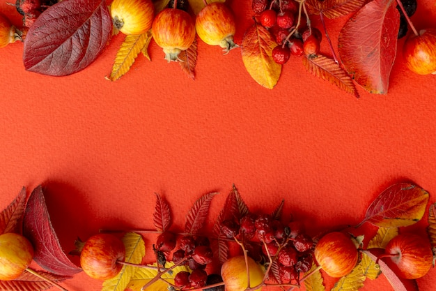 Fall leaves frame on a red background