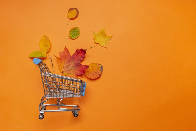 Fall leaves in grocery trolley on orange, flat lay
