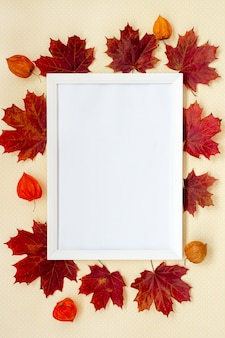 Fall photo frame physalis and leaves on pastel background