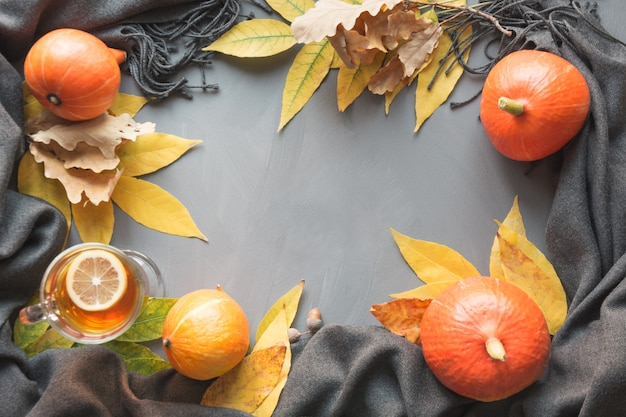 Fall still life of pumpkin and leaves on grey.