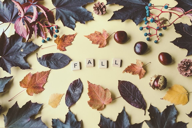 Fall word and composition of autumn leaves and horse chestnuts on yellow