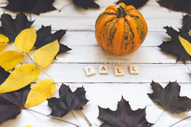Fall word, pumpkin and leaves on a wooden board