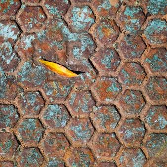 Fallen leaf on the vintage manhole.
