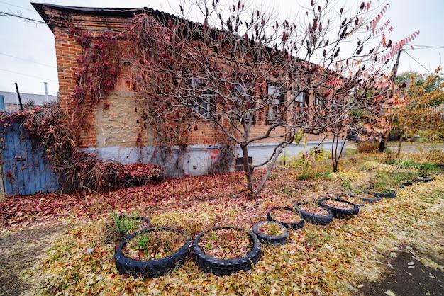 古い家の近くの街の通りに落ち葉。写真はロシア、オレンブルクで撮影されました