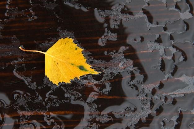 Упавший один осенний желтый лист на мокрой деревянной поверхности после дождя, вид сверху крупным планом
