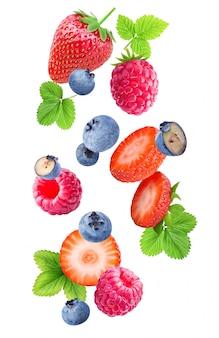 白で隔離される落下の果実