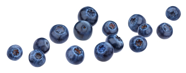 Falling blueberry isolated on white background