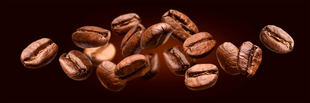 Falling coffee beans isolated on black banner background