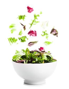 흰색 그릇에 녹색 잎이 떨어지는 샐러드