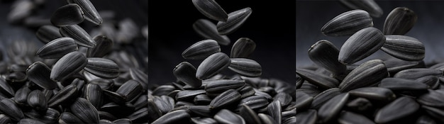 Falling sunflower seeds isolated on a black background, concept for use in packaging