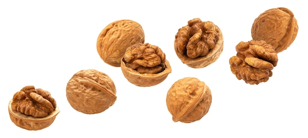 Falling walnuts isolated on white background with clipping path