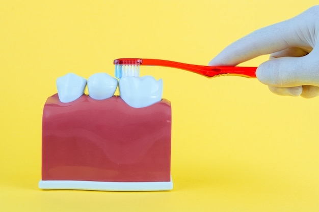 False mouth on yellow with toothbrush