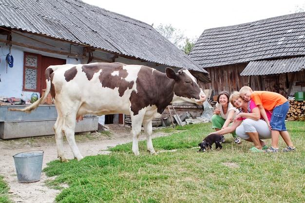 子牛と犬が遊んでいる家族の農場。