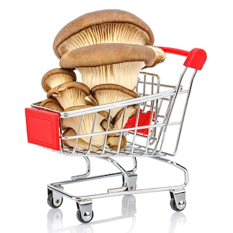 Family of fresh oyster mushrooms in chromed toy market shopping cart with red handle and plastic board on the front.