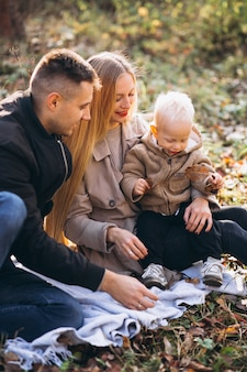 Family having small picnic with their son in autumn park