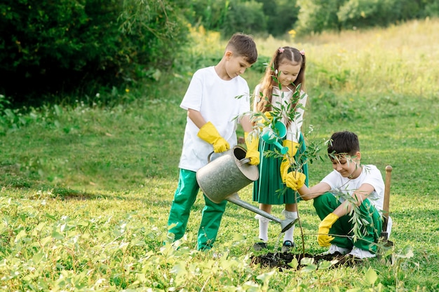 가족은 봄에 공원에 나무를 심고 있습니다.