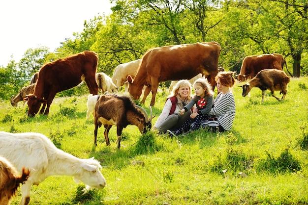 家族は牛や山羊と一緒に牧草地に座っています